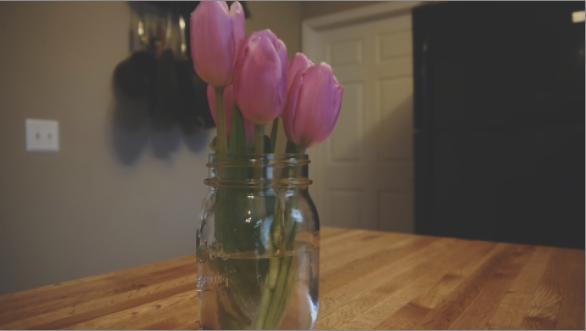 FlowerFadeAfter